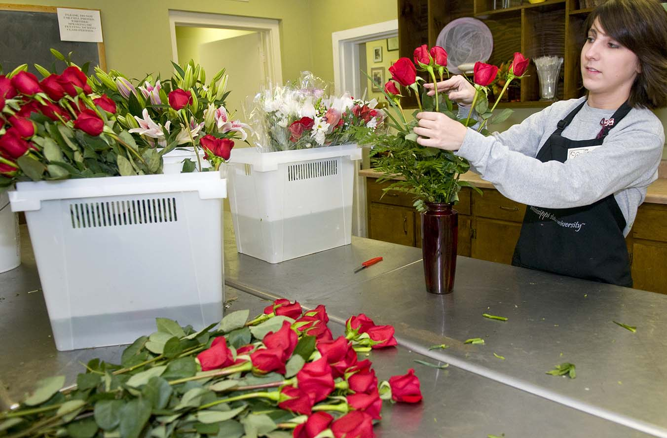 MSU Florist student worker Mary Beth put finishing touches on one of the hundreds of arrangements the campus business is selling for Valentine's Day. As florists everywhere know--and have the cramped hands to prove it--Feb. 14 traditionally is the largest single sales event of the year.